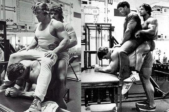 Donkey-Calf-Raises-Arnold