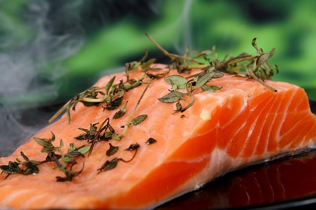salmon fotografia