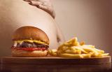 Mechanizmus fungovania závislosti na jedle. Ako funguje? A čo s ňou vieme spraviť?