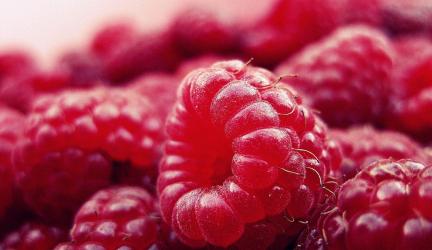 5 skvelých druhov ovocia, ktoré majú nízky obsah cukru